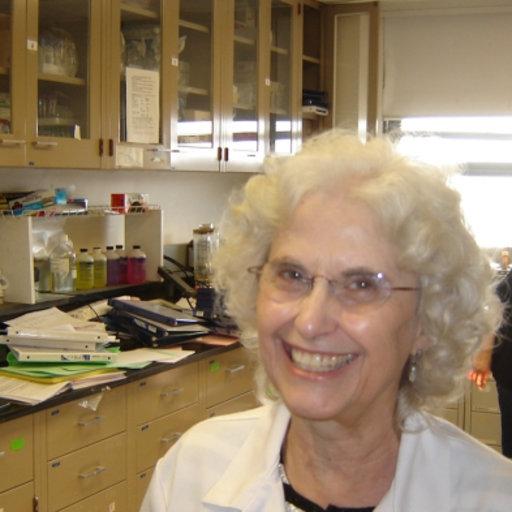 Phyllis Elaine Bowen